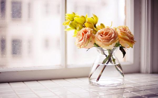 Cara yang Bisa Dilakukan Agar Bunga Dalam Ruangan Tidak Cepat Layu