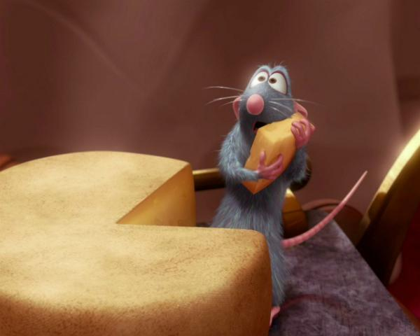 Membuat Jebakan Tikus Bebas Racun
