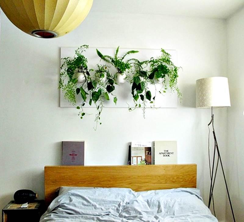 Image result for interior tanaman kamar tidur