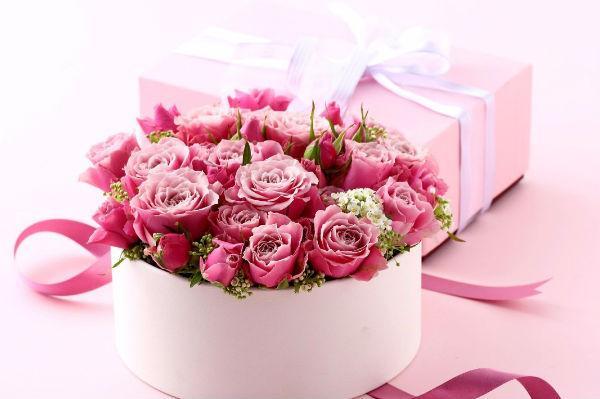 Mawar merah muda.